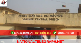 Cameroon: Mayor, Former D.O Spotted In Kondengui As New Detainees.